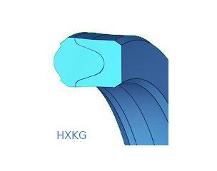 Gumitömítés, kompakt, dugattyúra, dugattyúrúdra - HXKG